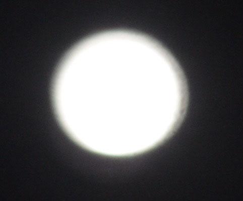 Moon11819