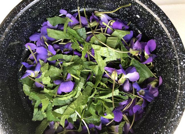Violetspan