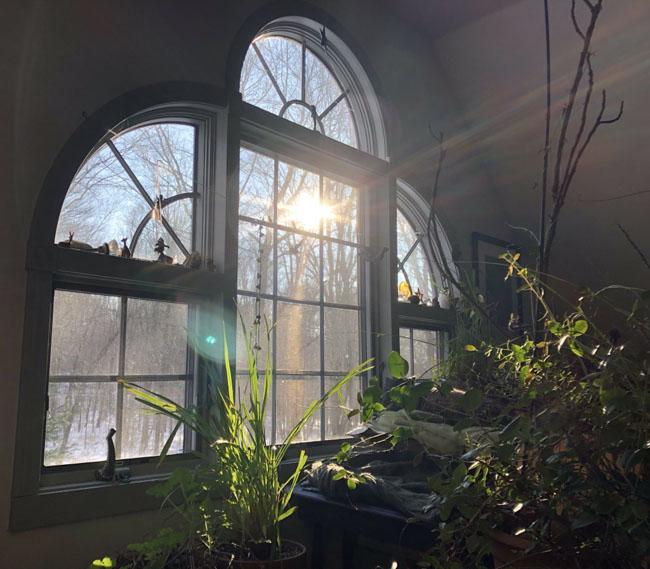 Solsticesunlight