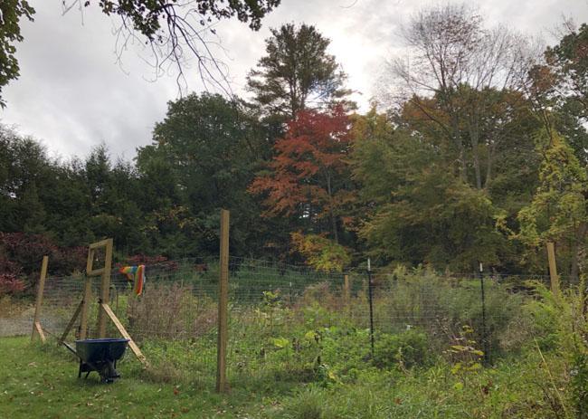 Garden100620