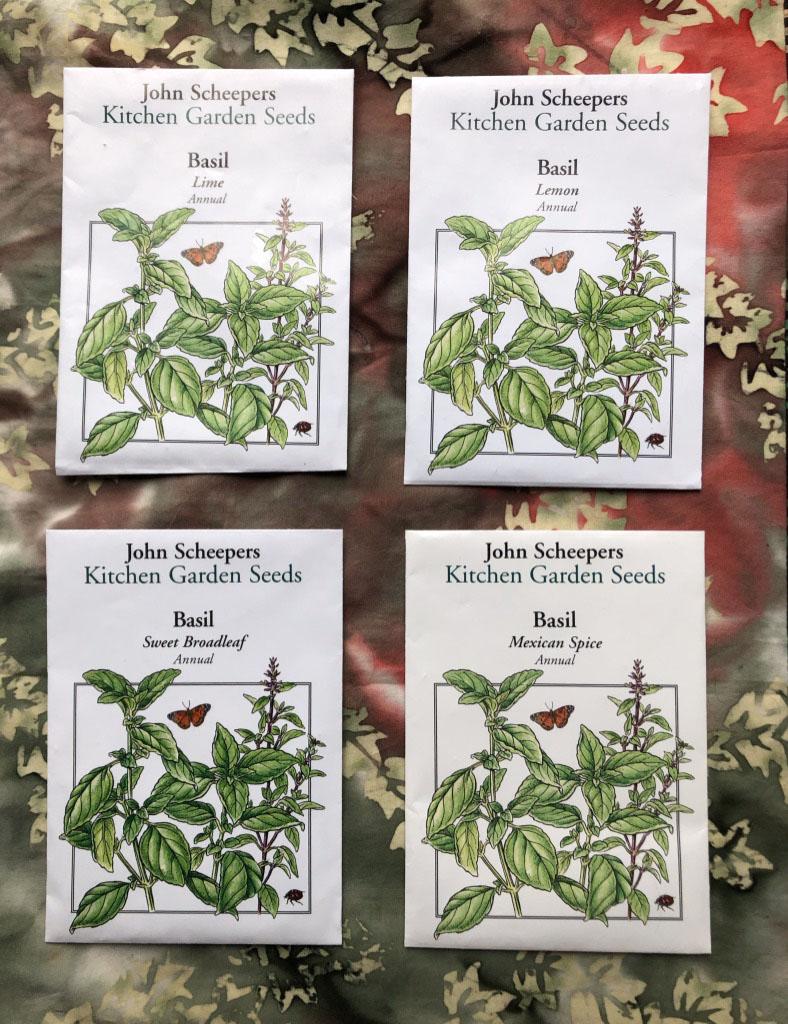 Basilseeds