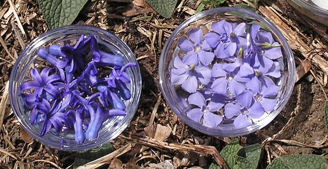 Blueflowerbowls