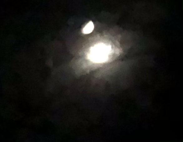 Moonoddity71721